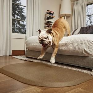 Terapeutické podložky pre psov - kolekcia Rounded